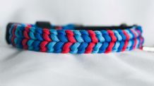 Cheeky Rascals Collar - Red/Baby Blue/Royal Blue
